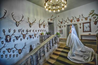 http://www.fotoz.sk/images/category-4/normal/eskuvoi-fotos_svadobny-fotograf_juraj_zsok_097.jpg